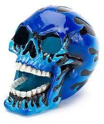 Kranium stort blåt.