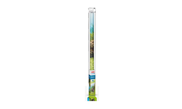 Juwel Poster 1 X-large baggrund