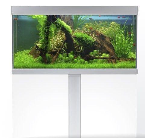 Akvastabil Fusion underskab til 250 liters akvariet.