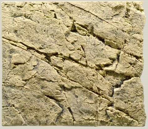BTN Slimline Sand 50 B