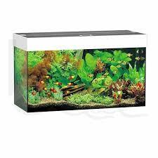 Juwel Rio Akvarie 125 liter hvid med Ledlys