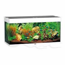Juwel Rio Akvarie 180 liter hvid med Ledlys