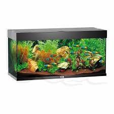 Juwel Rio Akvarie 180 liter sort med Ledlys