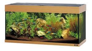 Juwel Rio Akvarie 180 liter lyst træ med Ledlys