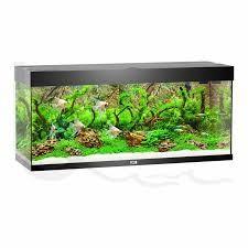 Juwel Rio Akvarie 240 liter sort med Ledlys