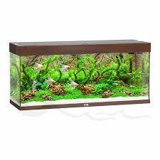 Juwel Rio Akvarie 240 liter Mørkt træ med Ledlys