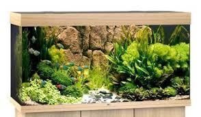 Juwel Rio Akvarie 350 liter lyst træ med Ledlys