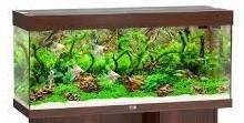 Juwel Rio Akvarie 350 liter mørkt træ med Ledlys