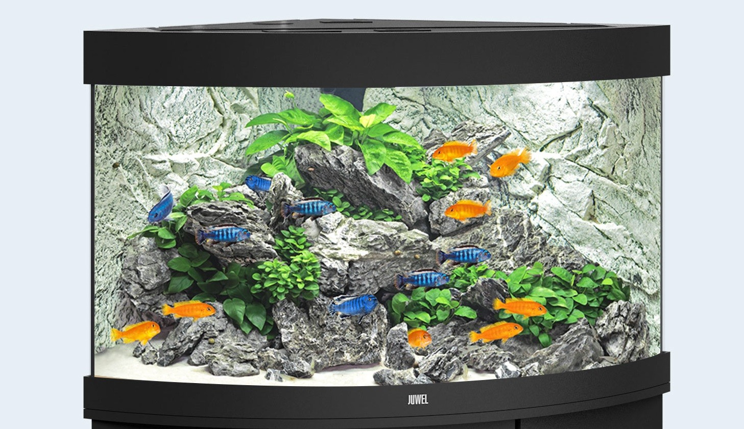 Juwel Trigon Akvarie 190 liter sort med Ledlys