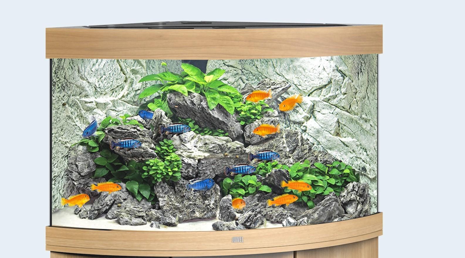 Juwel Trigon Akvarie 190 liter lyst træ med Ledlys