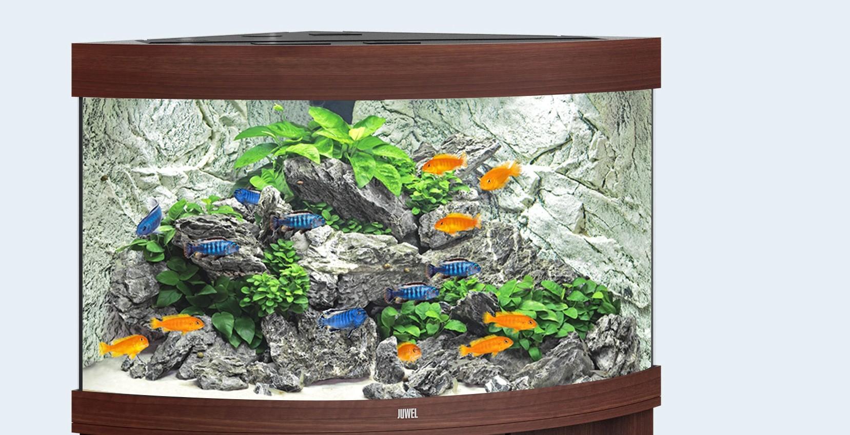 Juwel Trigon Akvarie 190 liter mørkt træ med Ledlys