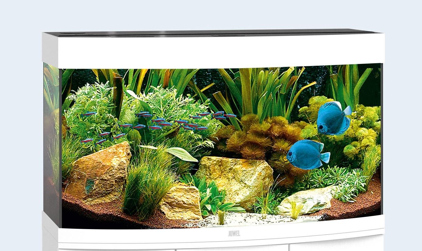 Juwel vision Akvarie 180 liter hvid med Led lys