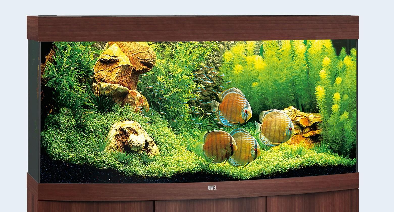 Juwel vision Akvarie 260 liter mørkt træ med Ledlys