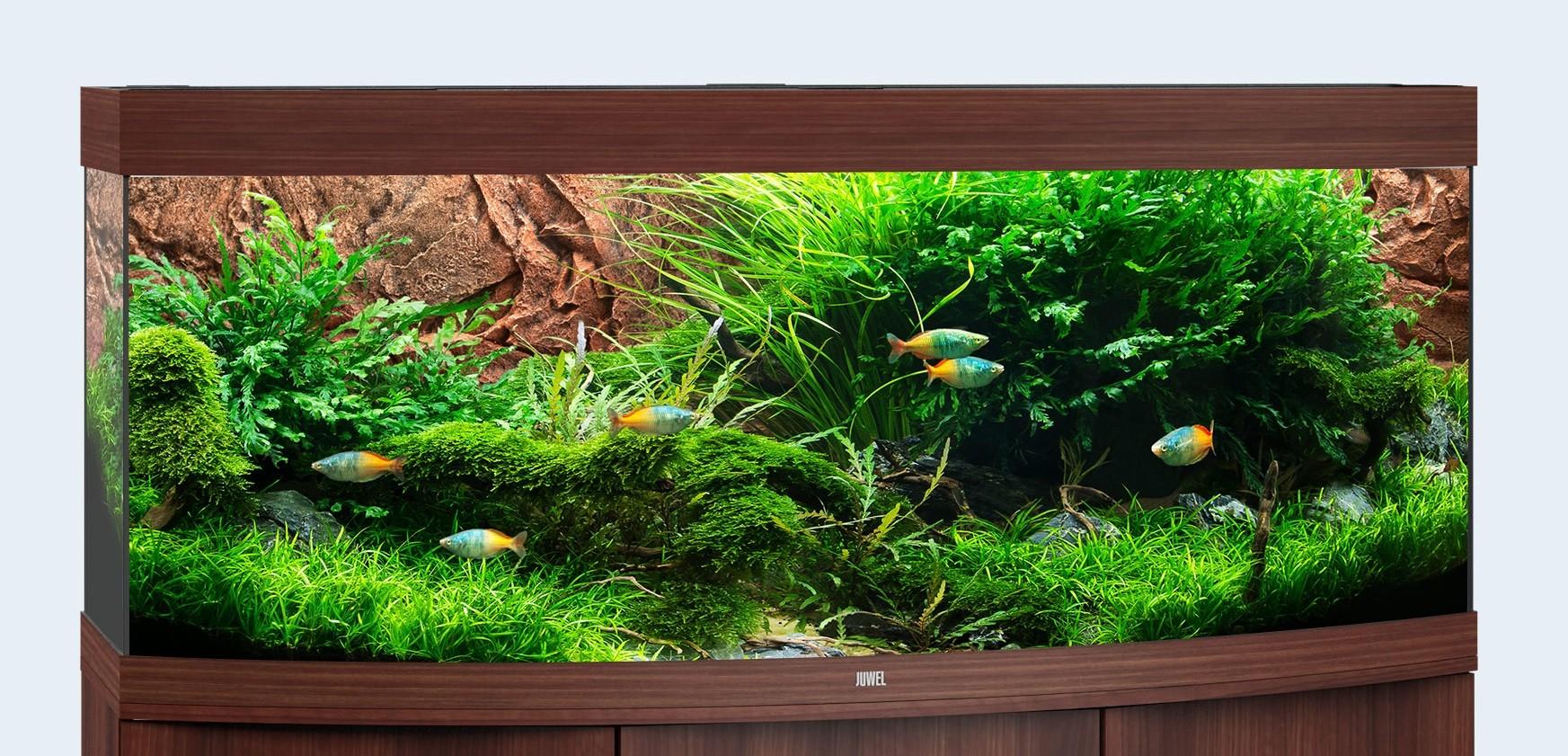 Juwel vision Akvarie 450 liter mørkt træ med Ledlys