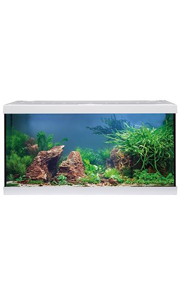 Eheim 54 LTR. Akvarie hvidt startsæt med Led lys Akvariestuen
