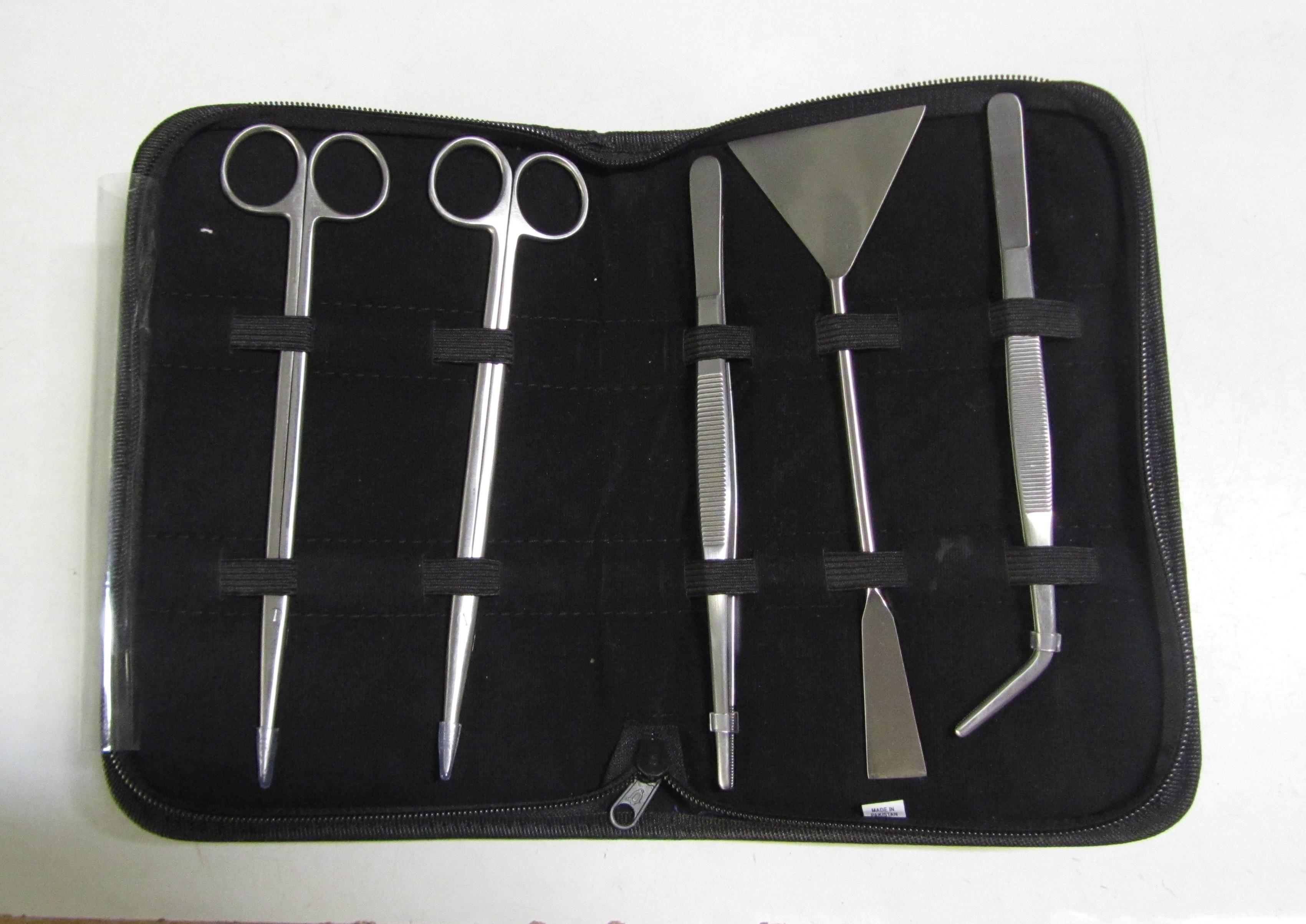 Aquascaping kit 20 cm.